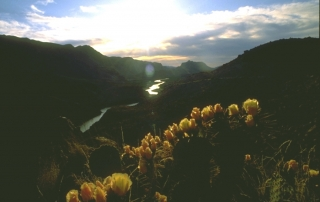 Colorado Canyon