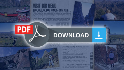 Download Brochure as PDF