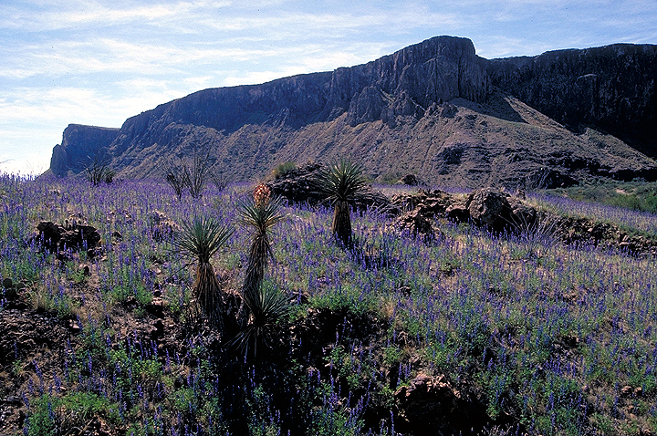 West Bend Ford >> Big Bend Texas Area - Visit Big Bend - Guides for the Big ...
