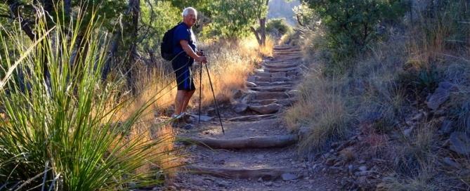 Chisos Basin Pinnacles Trail