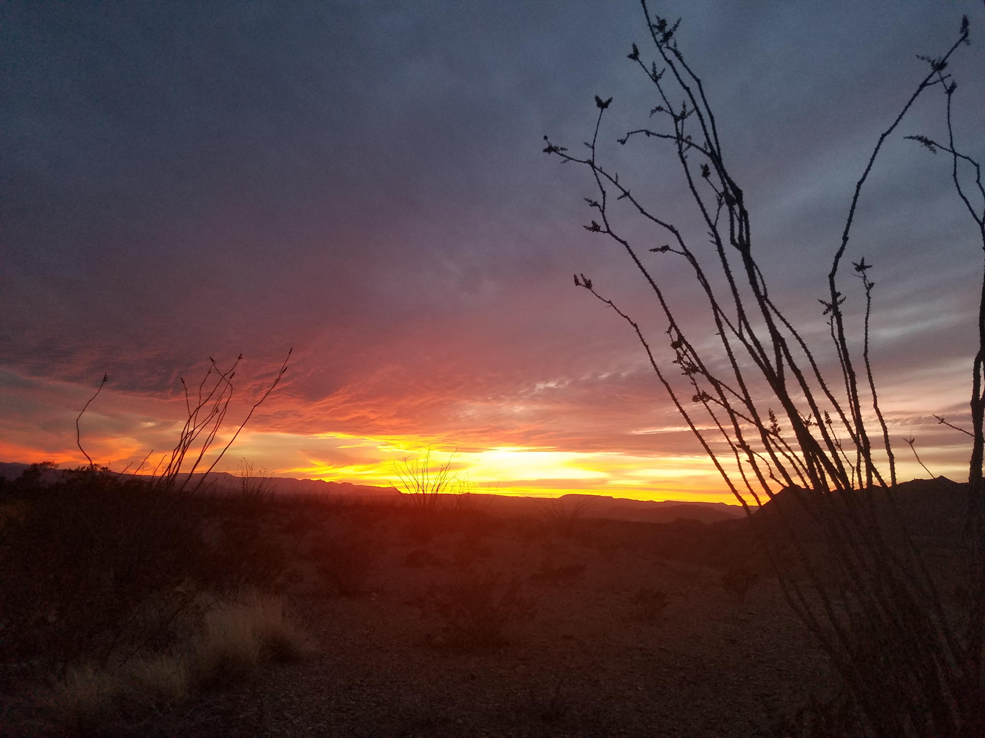 Sunset Visit Big Bend Guides For The Big Bend Region
